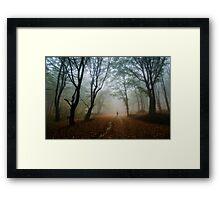 Autumn journey Framed Print