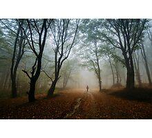 Autumn journey Photographic Print