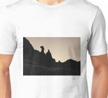 Arches NP XVI Toned  Unisex T-Shirt