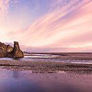 Pink Sunset by Svetlana Sewell