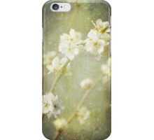 Spring's Enchantment iPhone Case/Skin