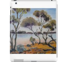 Lake near Northam, Western Australia. iPad Case/Skin