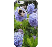 Bee Kind To Bees iPhone Case/Skin
