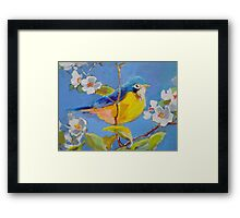 Little Yellow-Blue Bird Framed Print