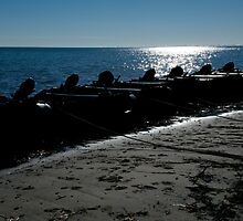 Silhouette of line of inflatables on beach by Nick Dale