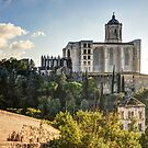 Girona Cathedral (Catalonia) by Marc Garrido Clotet