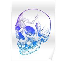 Scribbled Skull 2  Poster
