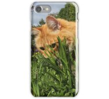 Ginger cat hunting in garden iPhone Case/Skin