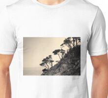 Point Lobos III Toned Unisex T-Shirt