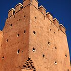 Walls of Marrakech by Ludwig Wagner