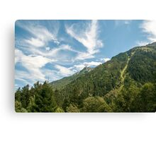 Alpine forest photographed near Mittersill, Tirol, Austria  Canvas Print