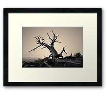 Arches NP VI Toned Framed Print