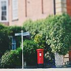 English Post Box by Indea Vanmerllin