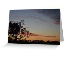 Bush Sunset Greeting Card