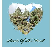 Heart Of The Forest Photographic Print