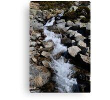 River Andorra La Vella Canvas Print
