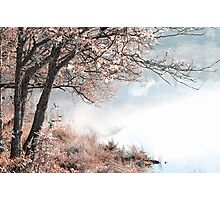 Floating Dream. Nature in Alien Skin Photographic Print