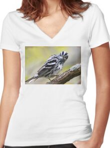 Black-and-white Warbler Women's Fitted V-Neck T-Shirt
