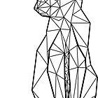 Geometric Cat by Freddie O'Brion