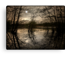 Moonlight over a lake in Spring Canvas Print