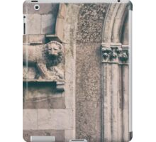 The lions den  iPad Case/Skin