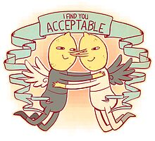 I Find You Acceptable by Katherine Farina