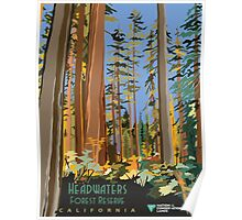Vintage poster - Headwaters Forest Reserve Poster