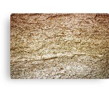 Stone rock Canvas Print