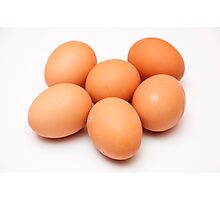 eggs on white background Photographic Print