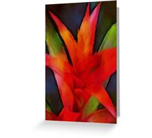 thinking of bromeliad Greeting Card