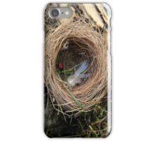 empty nest iPhone Case/Skin
