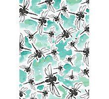 Dragonfly Handmade Print Photographic Print
