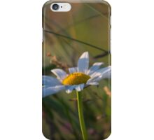 He Loves Me....He Loves Me Not iPhone Case/Skin