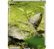Snapping Turtle & Frog Tanning. iPad Case/Skin