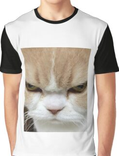 Cute Angry Kitten Graphic T-Shirt