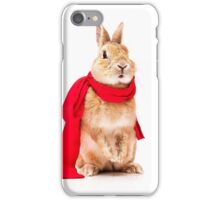 funny rabbit iPhone Case/Skin