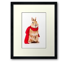 funny rabbit Framed Print