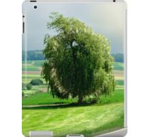 the willow near Silheim iPad Case/Skin