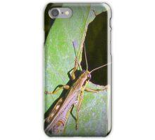 Grass Hopper  iPhone Case/Skin
