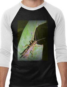 Grass Hopper  Men's Baseball ¾ T-Shirt