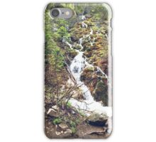 Green Waterfall iPhone Case/Skin