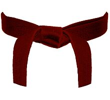 Martial Arts Red Belt Photographic Print