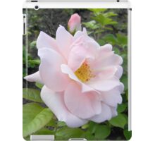 Pale Pink Rose with Bud iPad Case/Skin