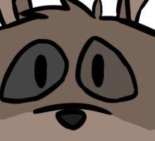 'lil Raccoon Cheeb Sticker