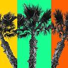 Desert Tropics by Cody  VanDyke