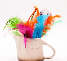 mug with colorful feathers by arnau2098