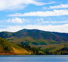 Pine Reservoir by kimberpix