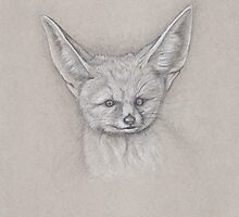 Fennec Fox Study by Jason Castillo