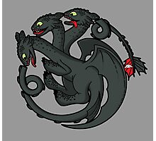 Toothless Targaryen Photographic Print