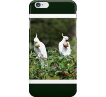 Cockatoo in  apple tree**Eatting Apples**Our Apples*  iPhone Case/Skin